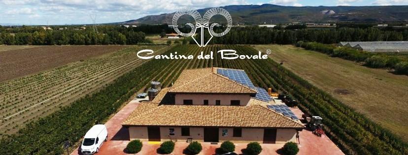 cantina-del-bovale_azienda01
